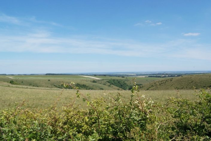 Cranbourne Chase, an Area of Outstanding Natural Beauty, stretches between Blandford and Salisbury.